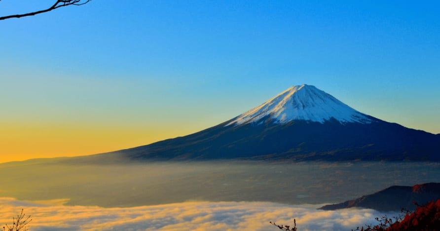Japonia consideră că impozitele reținute la sursă din Câștigurile cetățeanului străin