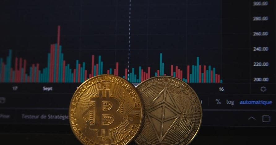 Jocurile de noroc Bitcoin vor crește după recentul anunț PayPal