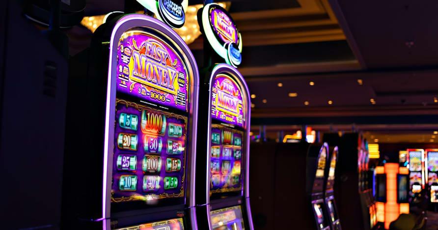 Ce trebuie să știți despre Play'n Go Money Filarea sloturilor noi - bogăția Rabbit Hole